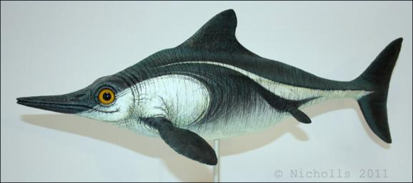 Scale model of <i>Ophthalmosaurus icanicaus</i> (50cm long)