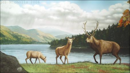 Red Deer at Loch Lomond